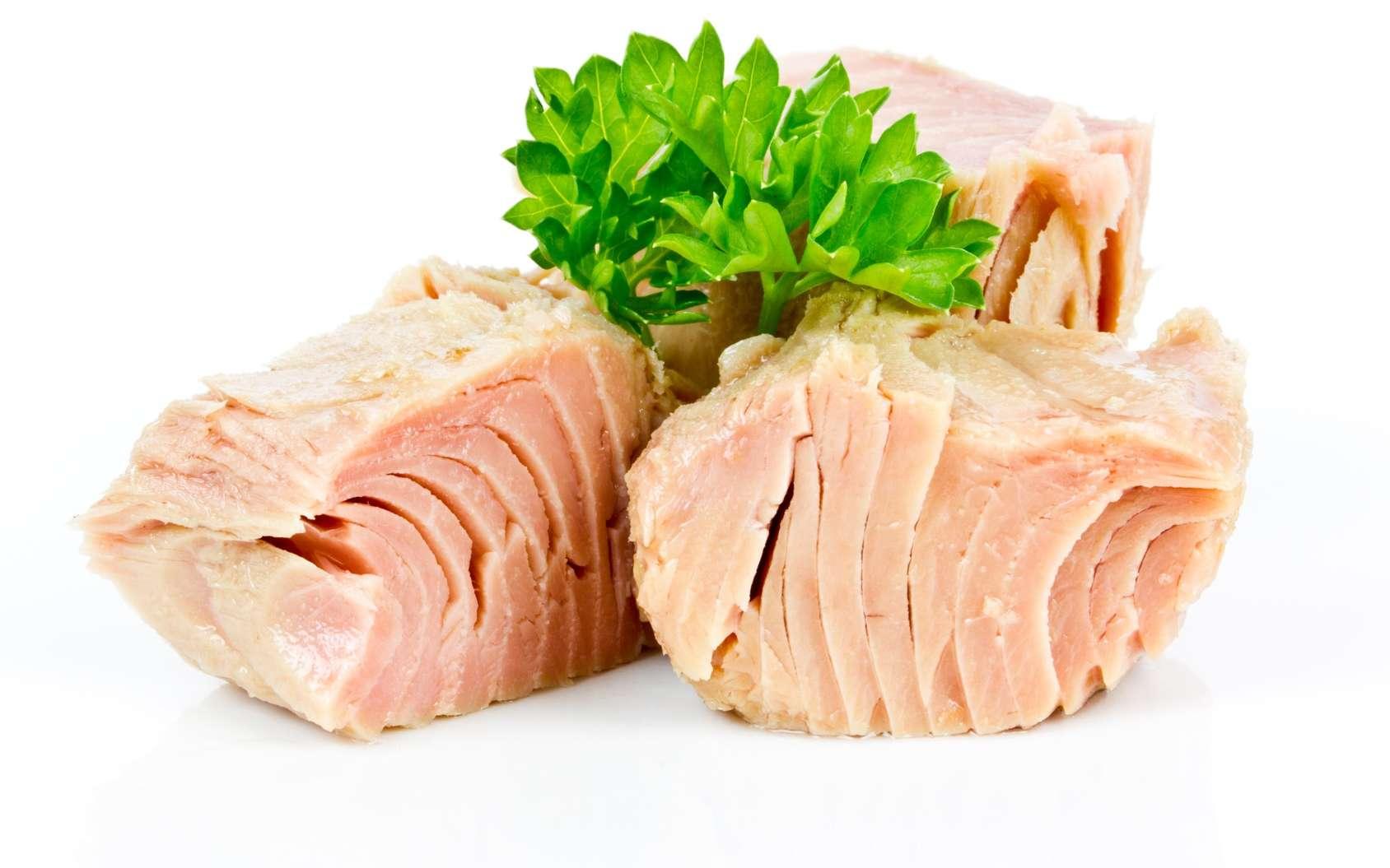 pescados con mas omega 3