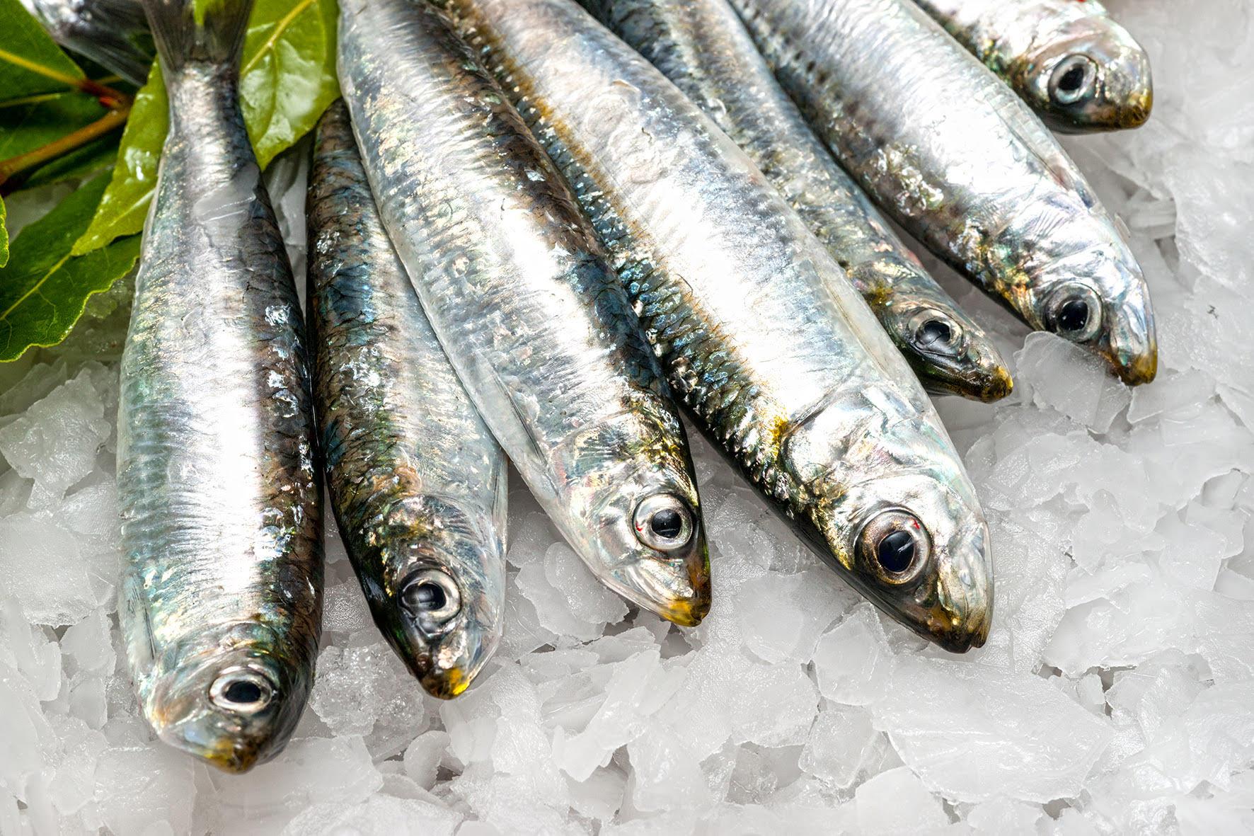 qué pescado es mejor para cenar