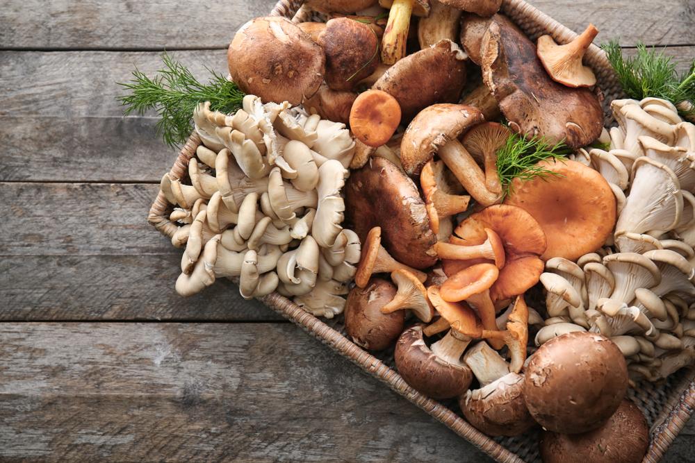 Las mejores recetas con espárragos trigueros y champiñones