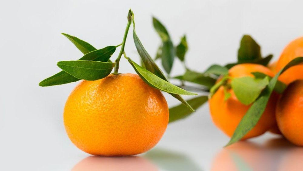 Propiedades nutricionales de la mandarina
