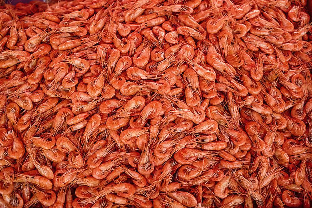 Beneficios de los camarones y consejos para su consumo saludable